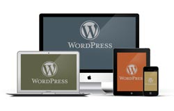mobile wordpress